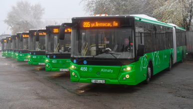На линию BRT выпустили автобусы-гармошки