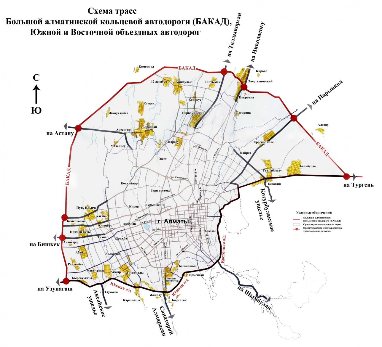20 тысяч деревьев вырубят близ Алматы из-за строительства БАКАД