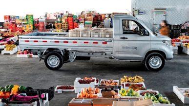 39 грузовиков пытались ввезти в Казахстан по поддельным документам из Китая